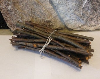 40 Fresh or Dried Apple Chew Sticks for Chinchillas, Rabbits, Gerbils, Hamsters, etc.