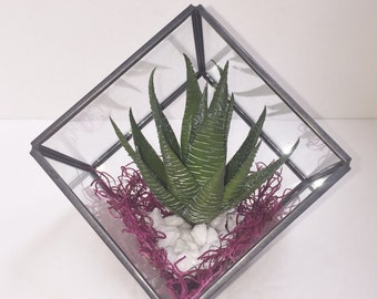 Geometric Terrarium, Faux Succulent Planter, Teacher's Gift, Geometric Cube Planter, Desk Accessory, Succulent Terrarium, Succulent Gift