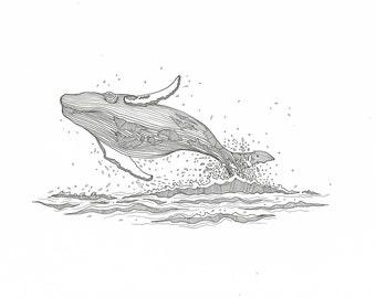 Blue Whale A4 Print