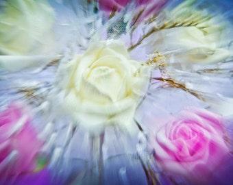 Flowers - zoom 7215