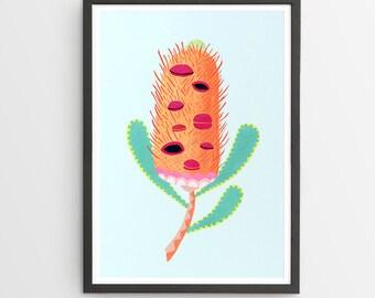 Banksia Flower Art Print / Australian Flora / Giclee Print / Poster / Flower Print / Native Flora
