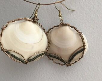 Clam shell earrings