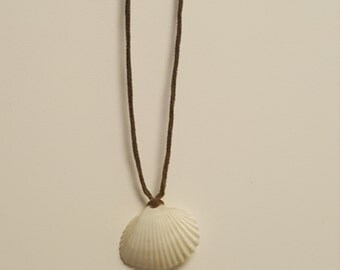 Floridian Shell Necklace