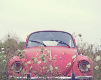 Fine Art Photo, Retro Art, Red, VW Bug Art, Love Bug, Queens Anne Lace, Volkswagen Art, Wildflowers, Boho, Whimsical Art, Hippie, Print
