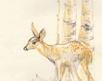 Fine Art Print - Little Deer - Etching