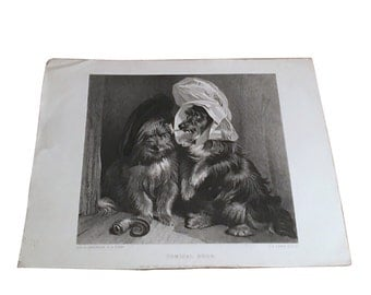 1840s Dogs Engraving by C Lewis, Sir Edwin Landseer Painting, Antique Comical Dogs