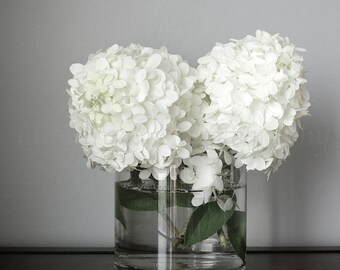 Hydrangea Print, Still Life Photography, White Flowers Print, Green Flower Photography,Hydrangea Wall Art,White Flower Art,Fixer Upper Decor
