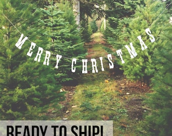 Merry Christmas Banner. Christmas Photo Prop.  Photo Booth, Photobooth, Photo Prop