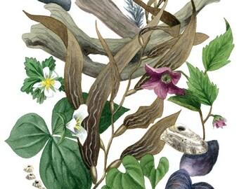 Fine Art Print of Original Watercolor Painting - Land & Sea
