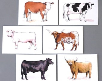 Cow Breeds - Postcards (Set of 6: Hereford, Holstein, Charolais, Texas Longhorn, Angus, Scottish Highland)