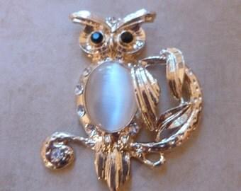 Stately Owl Magnet