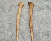 hair sticks for long hair, natural wood hair picks, two shawl pins, hand carved wooden hair sticks, wood carving, woodworking