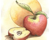 Cut Apple Still Life Watercolor Print