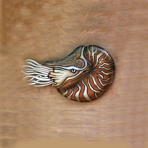 Nautical art sculpture nautilus wood carving