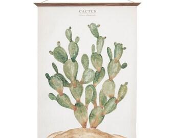 Cactus - Opuntia Jamaicensis - plant bonatic illustration wall poster - CAC1001