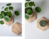 Coaster / Trivet /  WOOD / HEXAGON