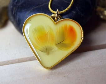 Heart-Shaped Double Red Fronted Macaw Feather Pendant
