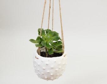 Modern Hanging Planter White Ceramic Plant Pot ~Hanging Plant Pot Spiky Organic Modern Planter~Porcelain Ceramic Sea Urchin Boho Minimalist