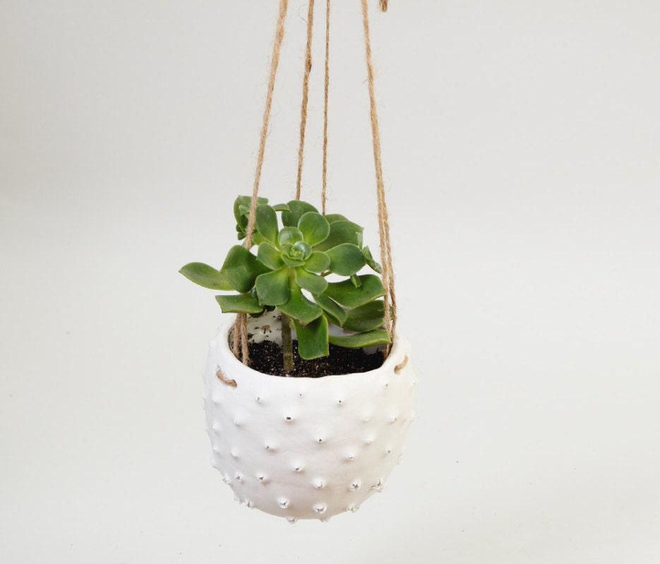 Modern Hanging Planter White Ceramic Plant Pot Hanging Plant