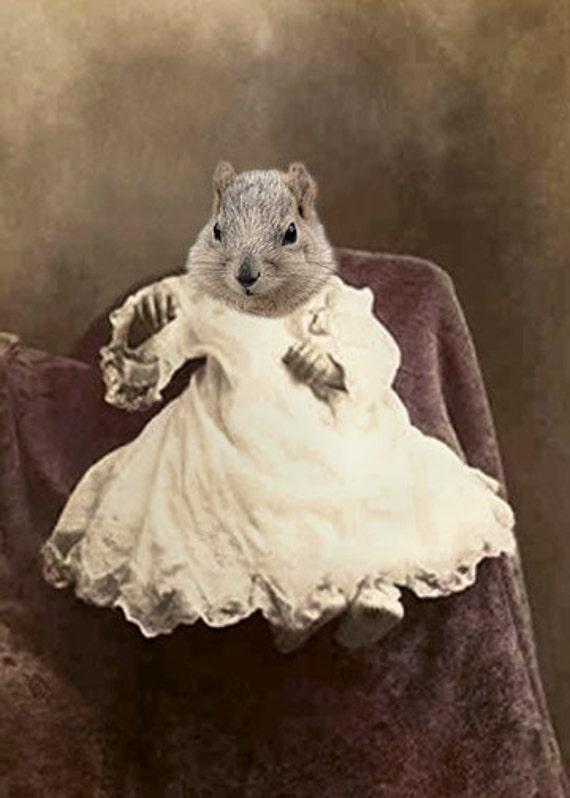 Sammie Squirrel, Vintage Squirrel Print, Anthropomorphic, Whimsical Squirrel, Squirrel Photo, Whimsical Art, Nursery Decor, Squirrel Baby