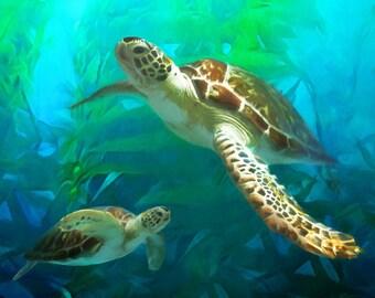 Sea Turtle Print,  Turtle Art, Sea Turtle Painting, Art Print, Beach Decor, Large Prints, Available on Canvas, Ocean Art,