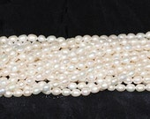 """Freshwater Pearl White 5.5-6mm Oval Beads - 14.5"""" Strand"""