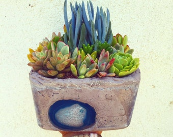 Large Concrete agate succulent arrangement