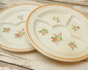 PAIR Moriyama Divided Plates Floral