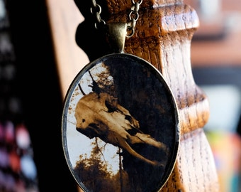 On the Border - Handmade photo pendant necklace resin oval bronze - Grand Canyon steer skull tree woods southwestern country spooky death