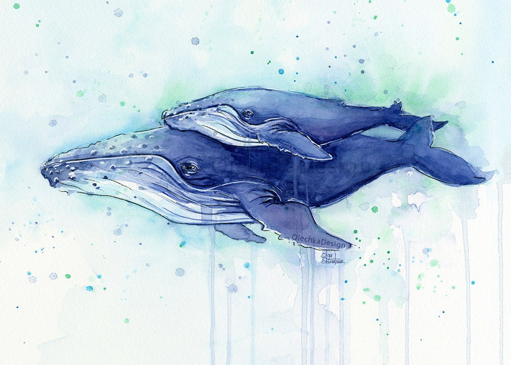 Humpback Whale Mom And Baby Watercolor Print Whale Art Whale