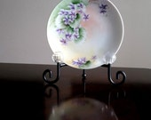J&C Bavaria Porcelain Hand Painted Artist Signed Decorative Plate / Signed N Rhodes