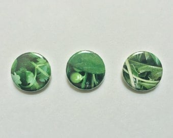 "Leafy Greens Lettuce Kale 1"" Pin-Back Buttons (Set of Three)"
