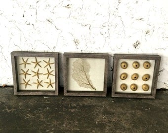Set of 3 framed gold sea urchin, seafan and starfish in grey distress shadow box on natural fabric. Cottage beach chic coastal home