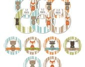 Closet Dividers and Matching Bin Labels for Organizing and Storing Clothes Baby Boy Woodland Nursery Clothing Organization CD039