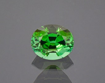 Gorgeous Bright Green Tourmaline Gemstone from Namibia 1.81 cts