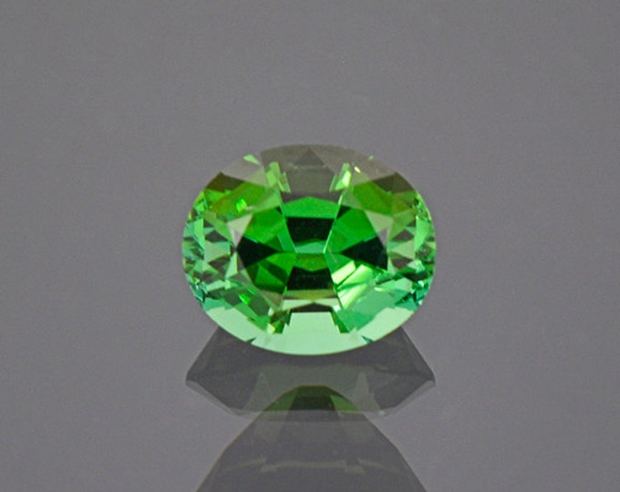 UPRISING SALE! Gorgeous Bright Green Tourmaline Gemstone from Namibia 1.81 cts