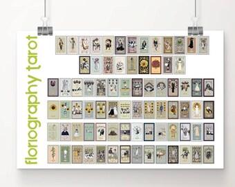 24 x 36 print, ALL 78 TAROT CARDS— Large Print from Floriography Tarot
