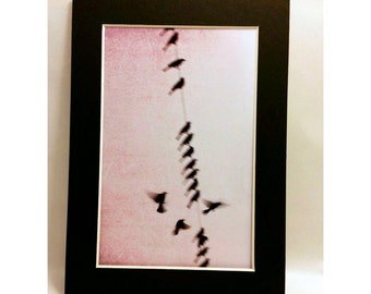 Birds in Dusty Pink-Matted 4x6 Print, Dreamy Photography, Bird Photography,Sky Photography, Nursery Art, Baby Girl Art, Fine Art Photography