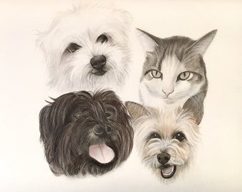 Custom portrait/ animals family/ drawing from photo/ dog and cat drawing/ gift idea/ animal lovers/ only faces