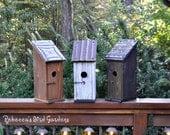 "Rustic Bluebird Birdhouse ~ ""The Jake and Elwood House of Blues"" Unique Birdhouse, Wood Birdhouse, Outdoor Birdhouse, Rebecca's Bird Gardens"