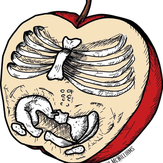 Anatomy of an apple