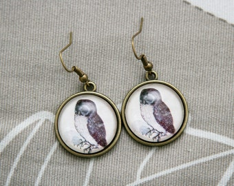 Albrecht Durer Owl Animal study art artist painting round earrings picture