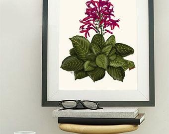 Tropical Flower 1 - flower print green and pink flower decor flower art print tropical decor tropical bedroom decor wall art botanical print