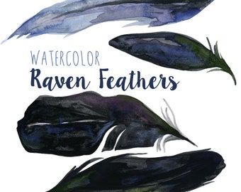 Watercolor Raven Feathers Clip art Clipart bird clip art feathers clipart Digital Download Goth clipart, Raven Feathers,