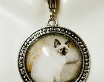 Cat pendant with chain - CAP26-011