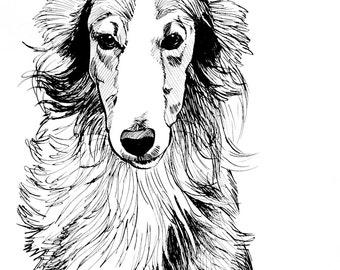 Original Ink Drawing Pen and Ink Silken Windhound Dog Artwork Original Artwork Small Wall Art For Dog Lover Unframed Artwork Black and White