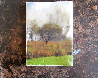 Small Encaustic Painting - Trees - Recycled Wood - Landscape - Mixed Media -