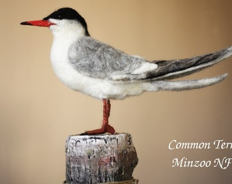 Faux taxidermy bird, gull, life sized bird, needle Felting seagull, Common Tern, nautical style, nautical theme decor. needle felted bird