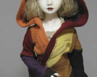 MSD short coat in fall colors
