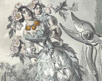 1847 Antique Grandville Les Fleurs Animees Aubepine Hand Colored Print Botanical Original